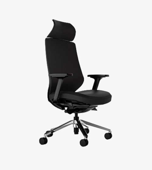 Arta Ergonomic Chair