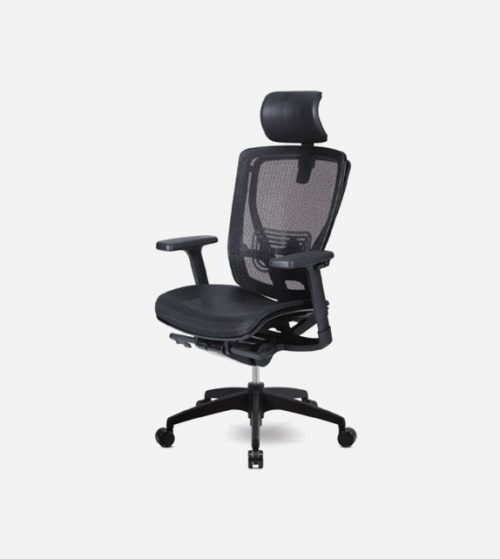 Korean Made Eon Ergonomic Chair
