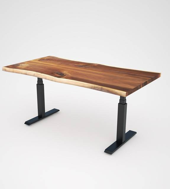 Stand Up Desk with solid wood desktop