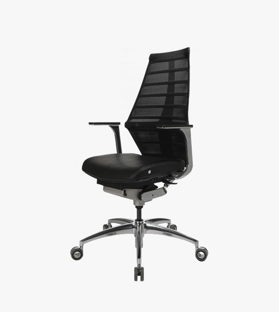 Wagner W5 Ergonomic Chair