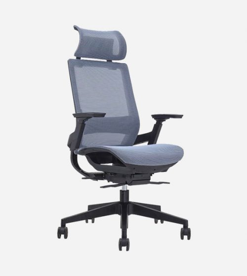 Emery Ergonomic Chair