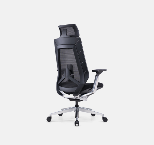 Grills Ergonomic Chair