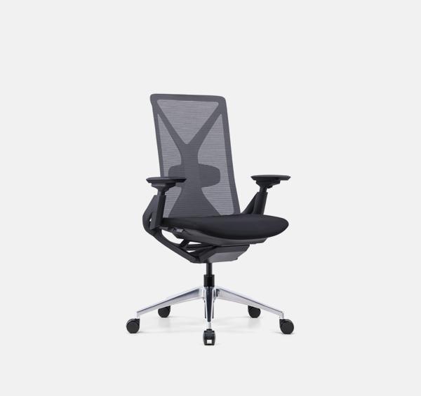 Lark Ergo Chair
